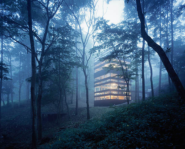 tna ring house 1 Contemporary Home Amid the Trees – The Ring House