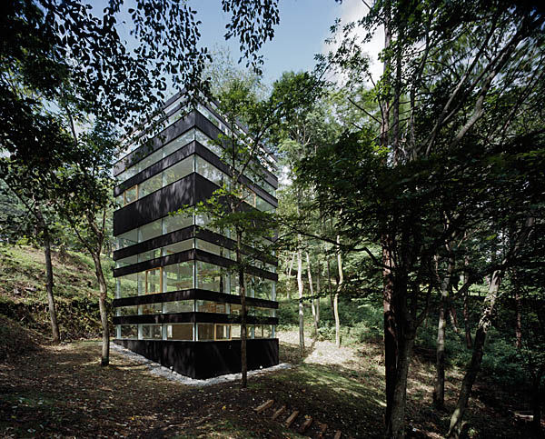 tna ring house 2 Contemporary Home Amid the Trees – The Ring House