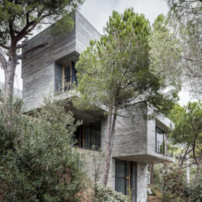 Steep Slope House design goes vertical, just like trees
