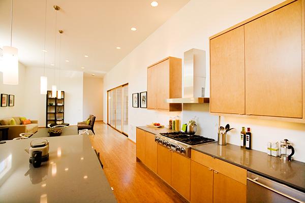 wooden-house-seattle-pb-elemental-architecture-dang-7.jpg