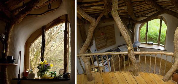 woodland house 3