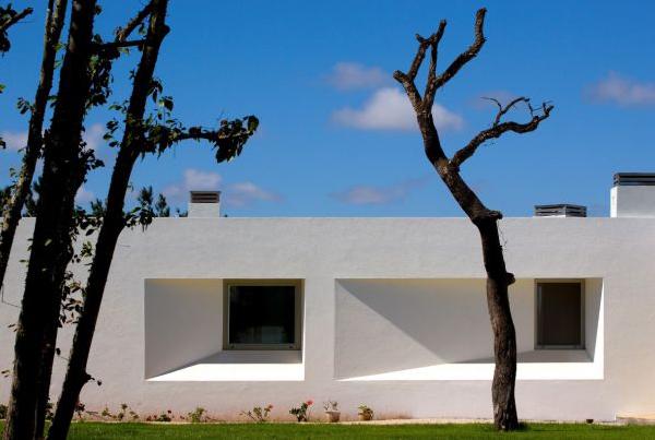 y-house-7.jpg