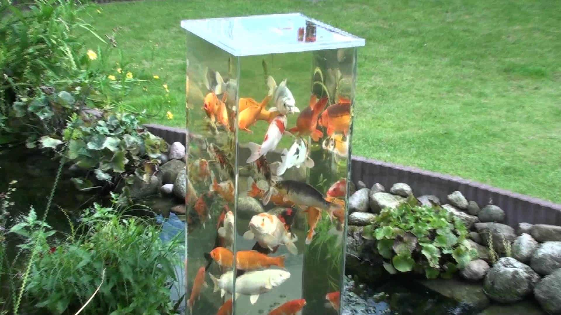 35 sublime koi pond designs and water garden ideas for for Koi carp pond design