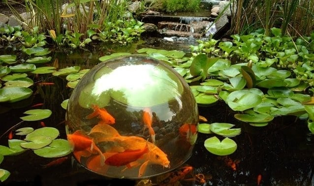 35 sublime koi pond designs and water garden ideas for for Koi fish pool table