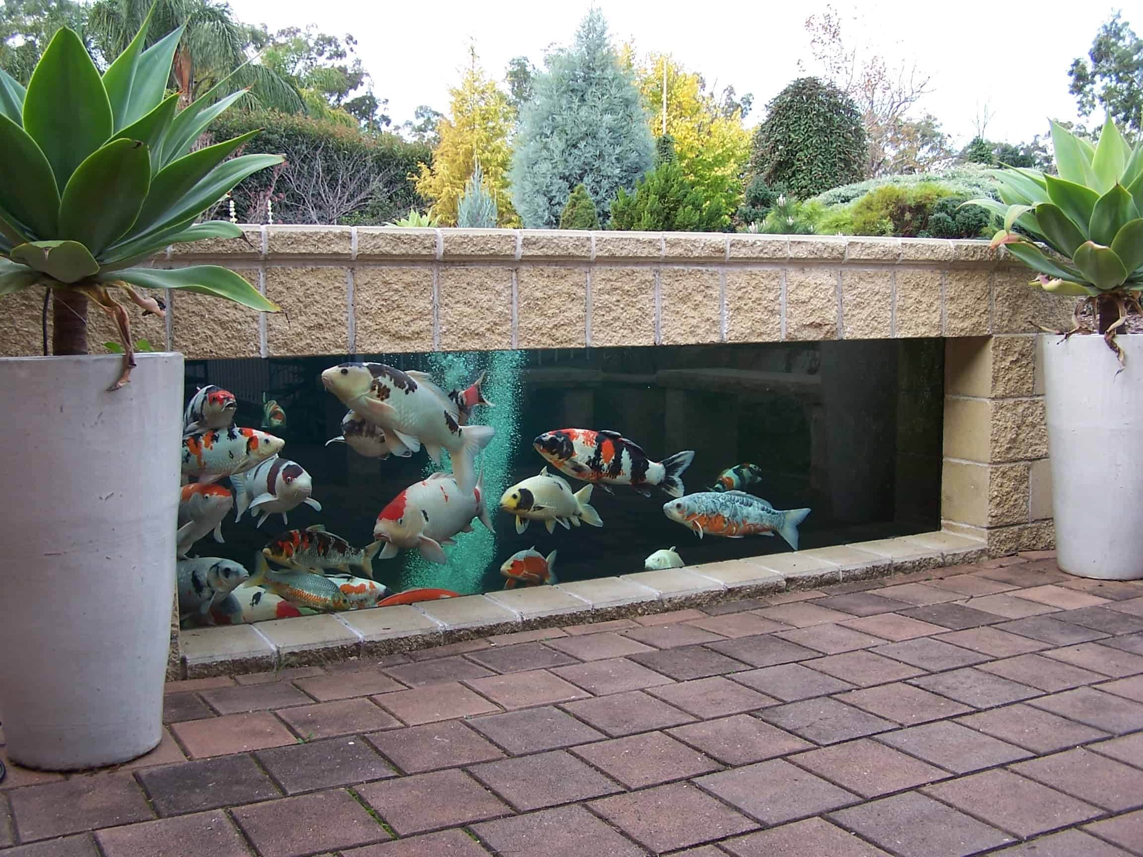 35 sublime koi pond designs and water garden ideas for for Raised fish pond designs