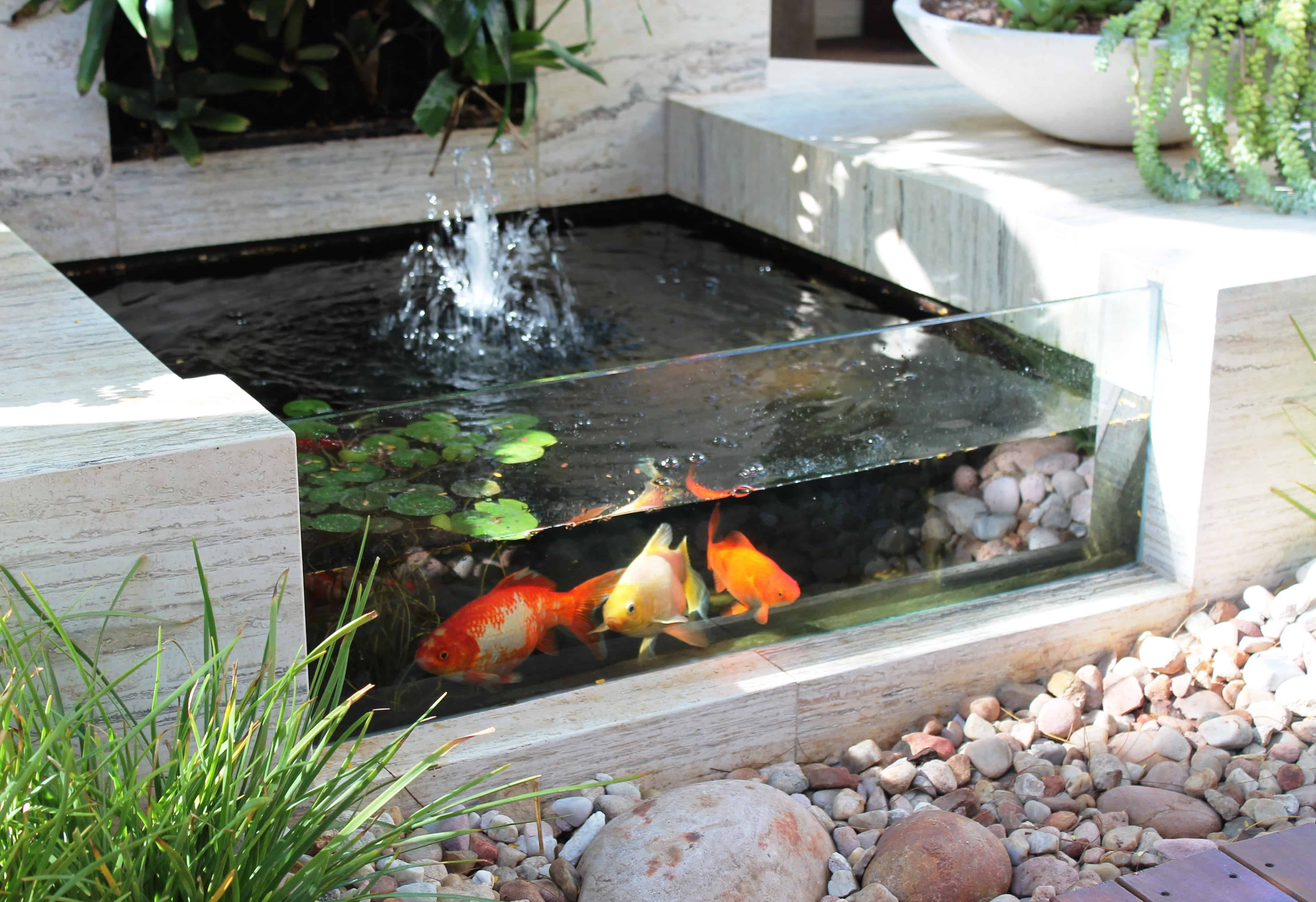 35 sublime koi pond designs and water garden ideas for for Koi carp pool design