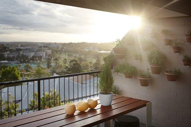 bold-choices-dramatize-penthouse-apartment-5-deck-plants.jpg