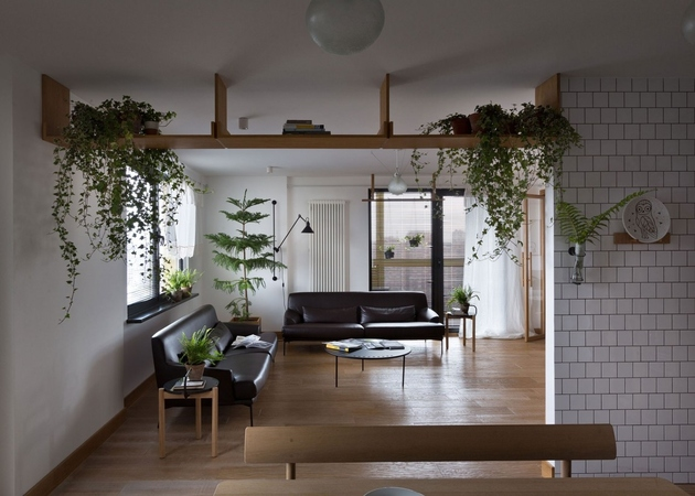 11-apartment-plants-air-purification.jpg