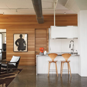 Elegant Apartment Design by Poteet Architects
