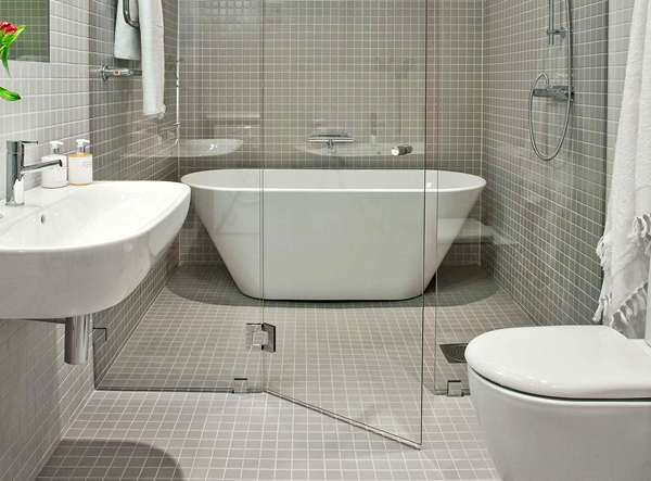 glass dividers in bathroom interesting interior idea 1 Glass Dividers in Bathroom   interesting interior idea