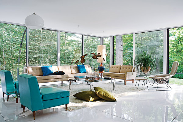 Modern Mid Century Dream Interior