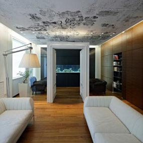 Unusual Idea for Dividing Rooms