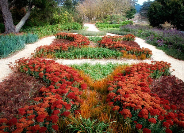 drought tolerant garden design eckersley 1 Drought Tolerant Garden Design by Eckersley Garden Architecture