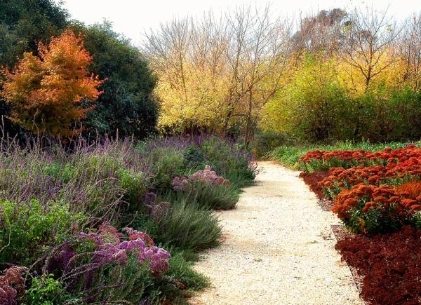 drought tolerant garden design eckersley 2 Drought Tolerant Garden Design by Eckersley Garden Architecture
