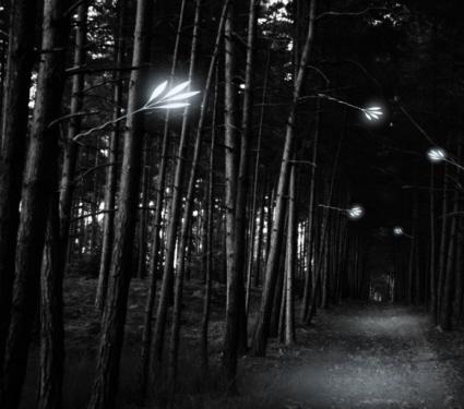 jongoh lee invisible street light