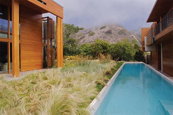 pamela-burton-award-landscape-2.jpg
