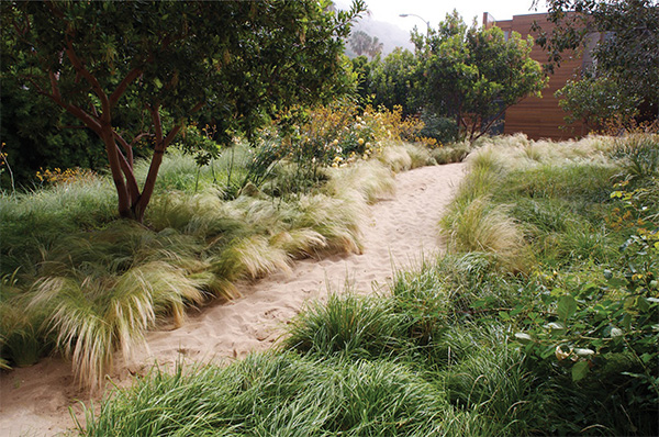 pamela burton award landscape 5 Sustainable Landscape Design by Architect Pamela Burton & Company, Malibu, California