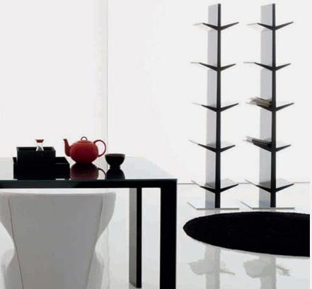 compar-bookcase-cactus-1.jpg